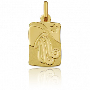 Medalla Horóscopo Acuario Oro amarillo 9k