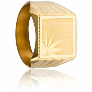 Anillo de sello cuadrado facetado Oro Amarillo 9K