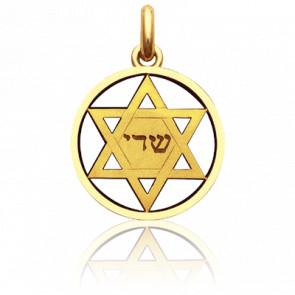 Medalla Estrella de David